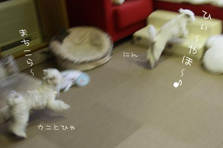 8_10_3221.jpg