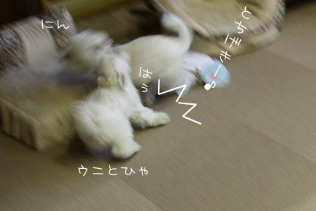 8_10_3228.jpg