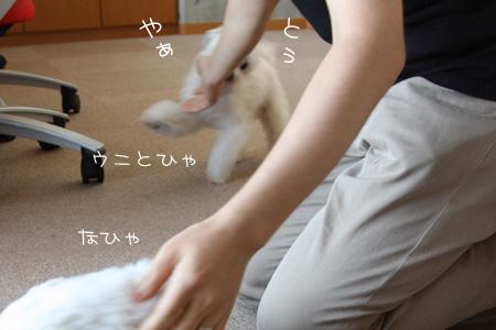 8_12_3490.jpg