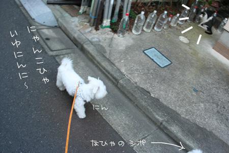 8_14_2219a.jpg
