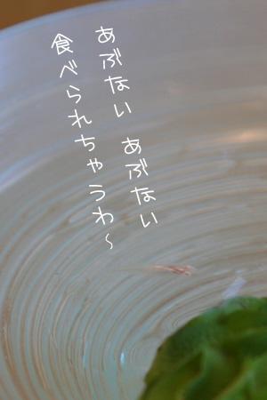 8_16_2342.jpg