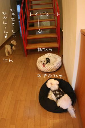 8_16_2429.jpg