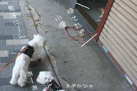 8_19_2895.jpg