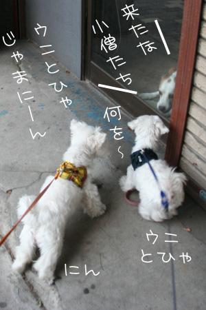8_22_3205.jpg