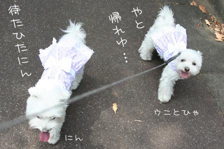 8_23_3613.jpg