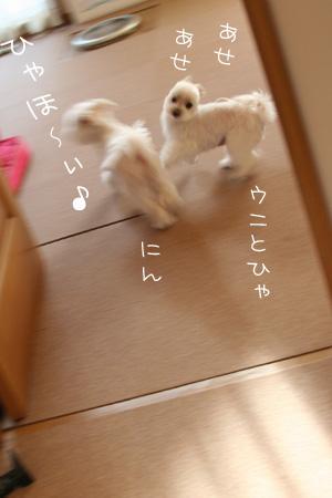 8_24_4053.jpg