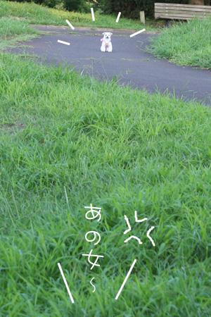8_26_4891.jpg