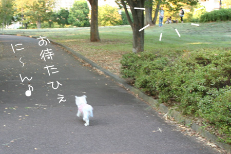 8_27_5094.jpg