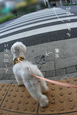 8_3_2005.jpg