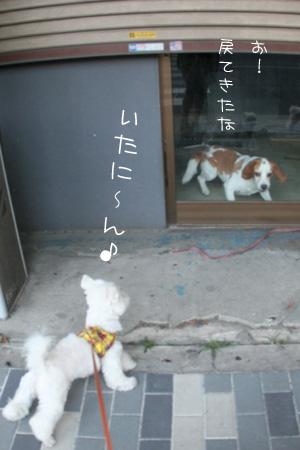 8_3_2009.jpg