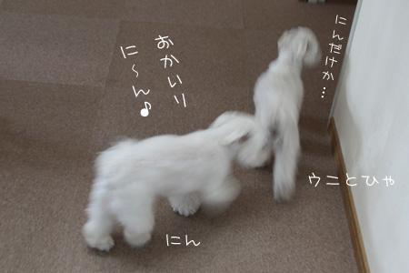 8_8_3000.jpg