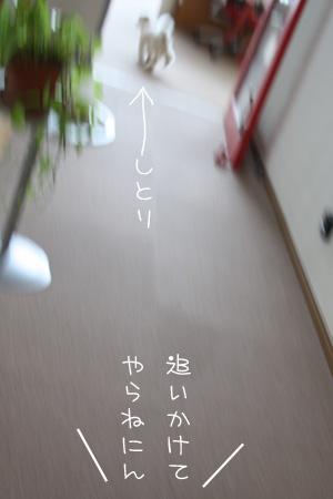 8_8_3005.jpg