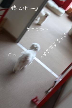 8_8_3006.jpg