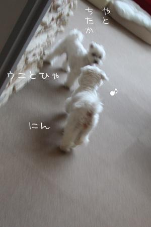 8_8_3008.jpg