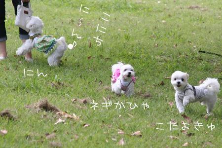 9_11_8102.jpg