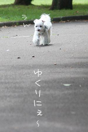 9_13_8293.jpg