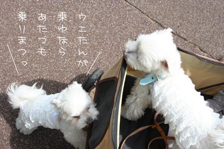 9_13_8302.jpg