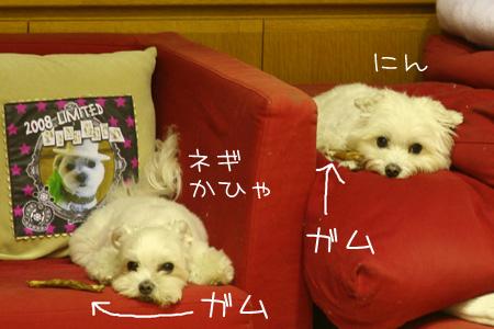 9_14_8335.jpg