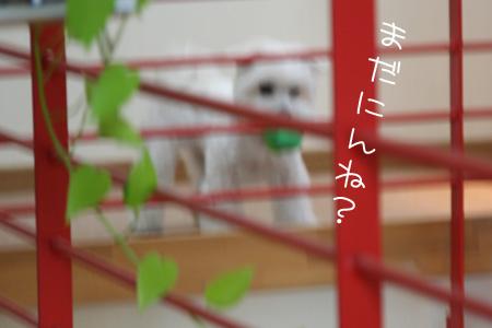 9_2_6169.jpg