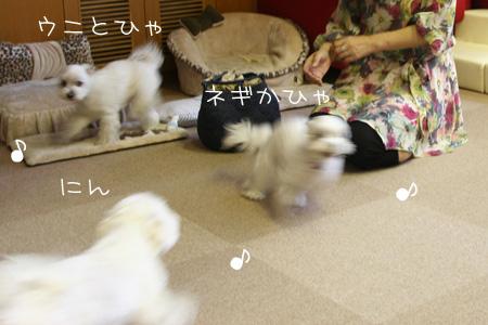 9_2_6266.jpg