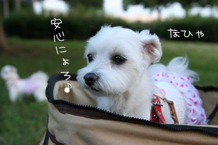 9_5_6559.jpg