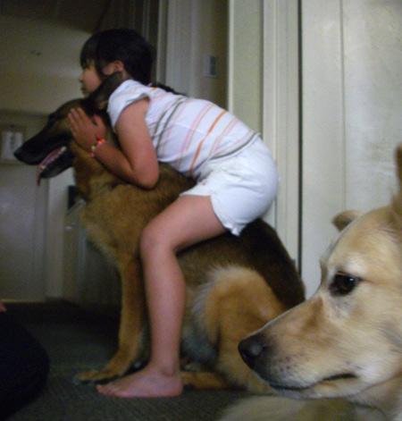 dogs3_20090629001620.jpg