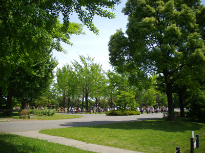 park12.jpg