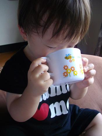 pika3_20090624200302.jpg