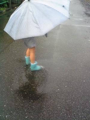 rain8.jpg