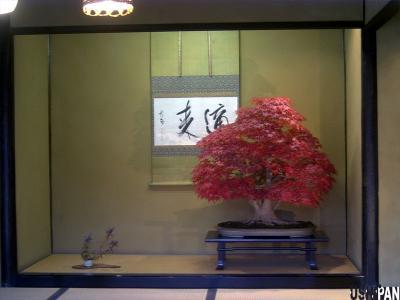 昭和記念公園紅葉08