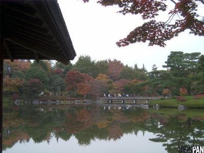 昭和記念公園紅葉13