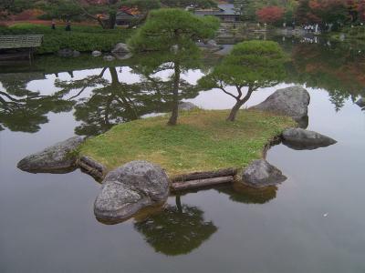 昭和記念公園紅葉17