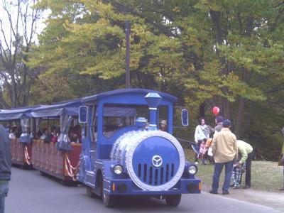昭和記念公園紅葉18