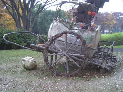昭和記念公園紅葉19