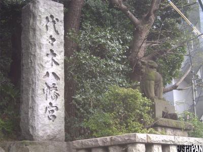 代々木八幡宮の狛猫1