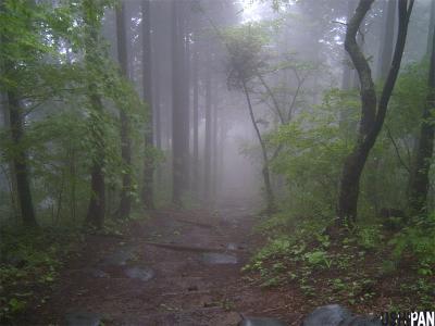 陣馬山20090524c