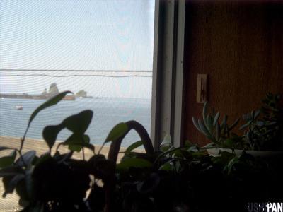 2階の窓から