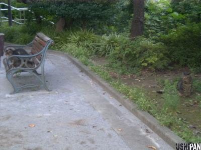 三田丘の上公園2