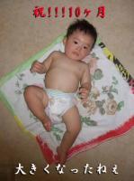 BLOG2008_0911_204257.jpg
