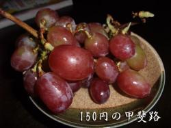 BLOG2008_1005_115816.jpg