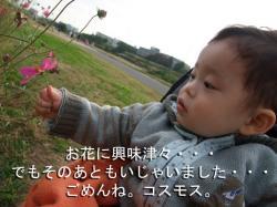 BLOG2008_1102_154842.jpg