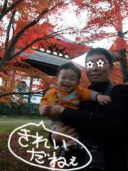 BLOG2008_1123_161052.jpg