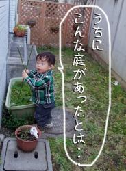 BLOG2009_0315_171405.jpg