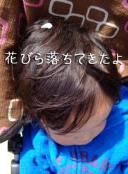 BLOG2009_0408_120307.jpg