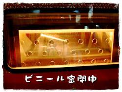 BLOG2009_0518_150937.jpg