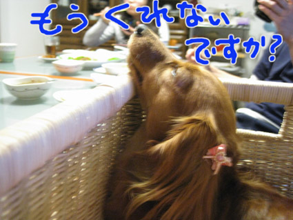 blog 09042405