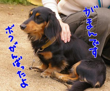 blog 09050504