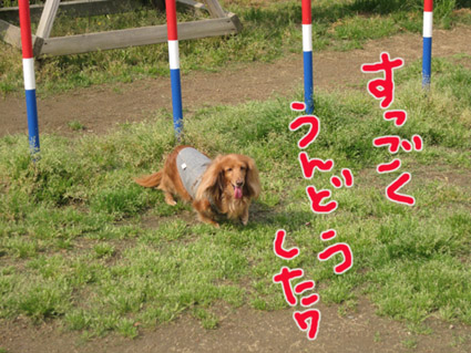 blog 09050501