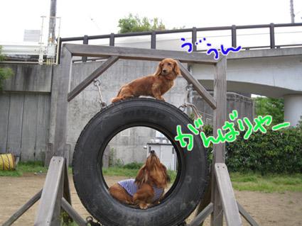 blog 09050603