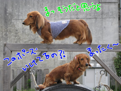 blog 09050601